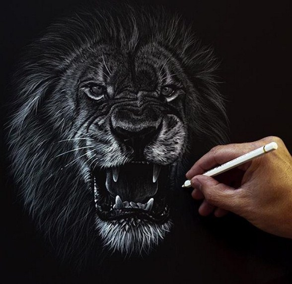 lion animal paintings by richard symonds