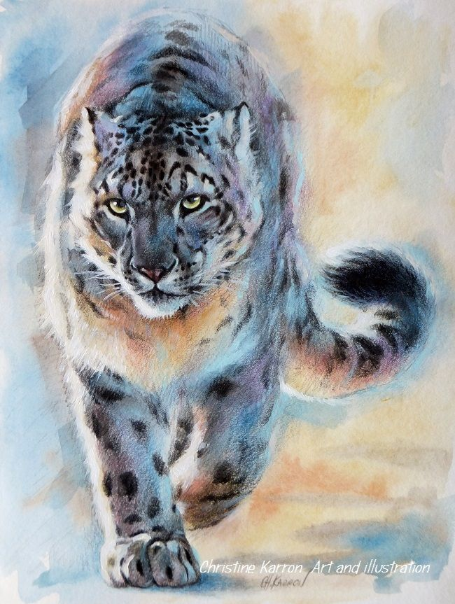 tiger watercolor paintings by christine karron