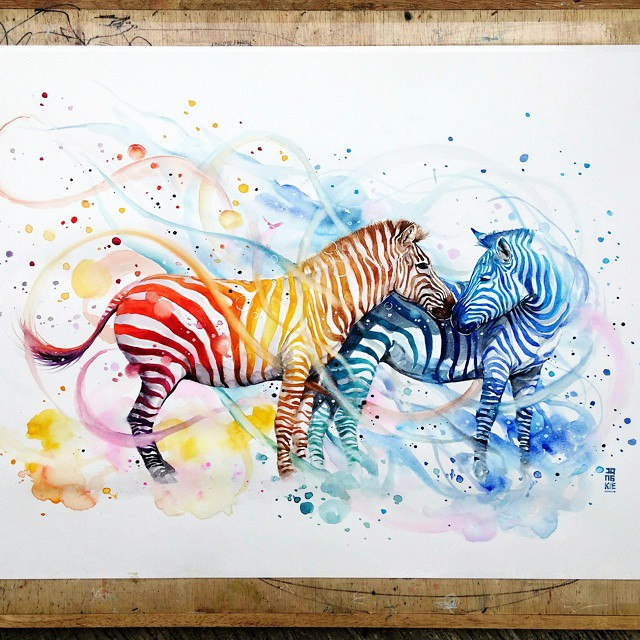 7 zebra animal watercolor paintings by luqman reza