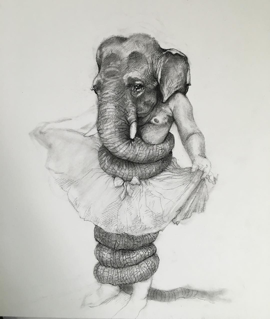 elephant man pencil drawing by adonna khare