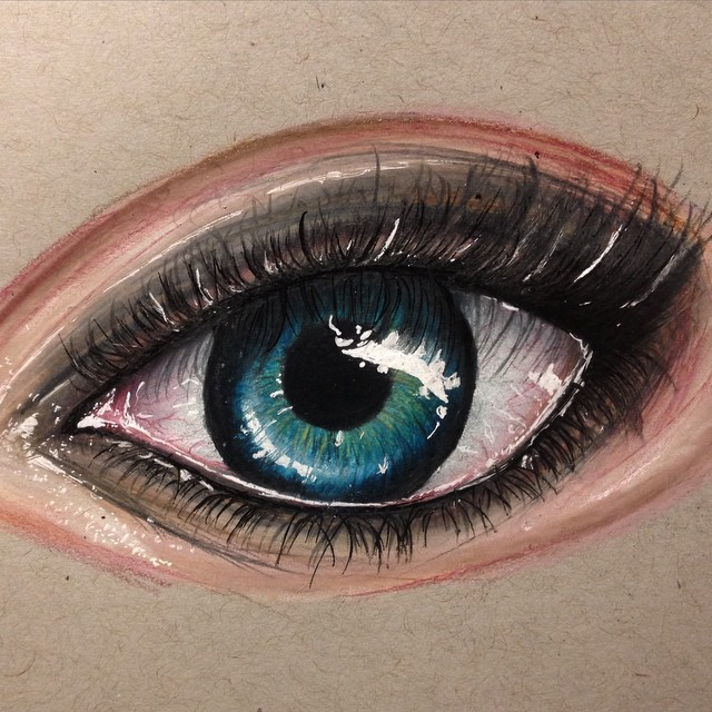eye color pencil drawings by stephanie frederick