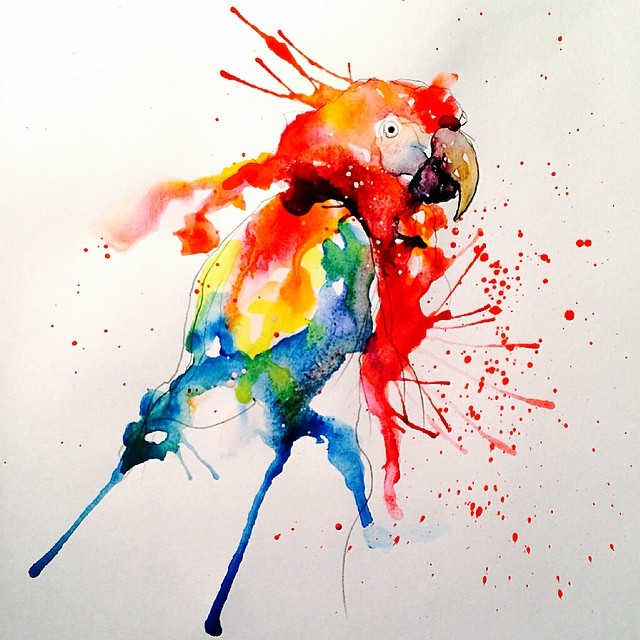 parrot colorful watercolor paintings by liviing