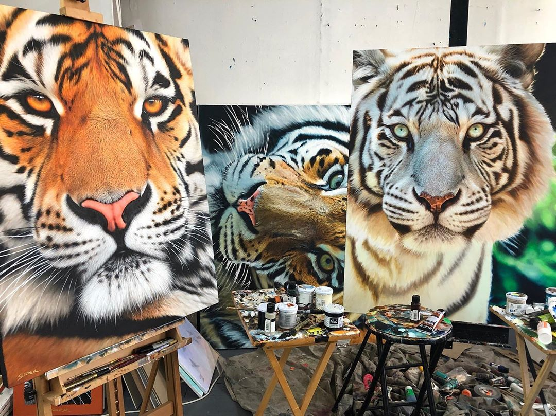 painting tigers nick sider