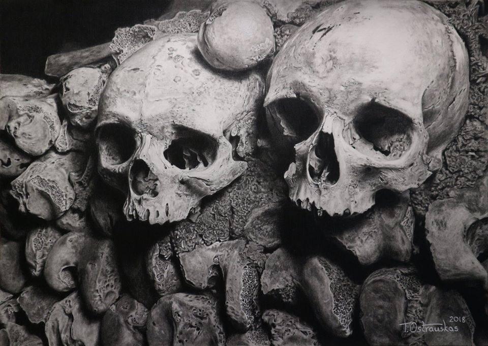 pencil drawing skulls tomas ostrauskas
