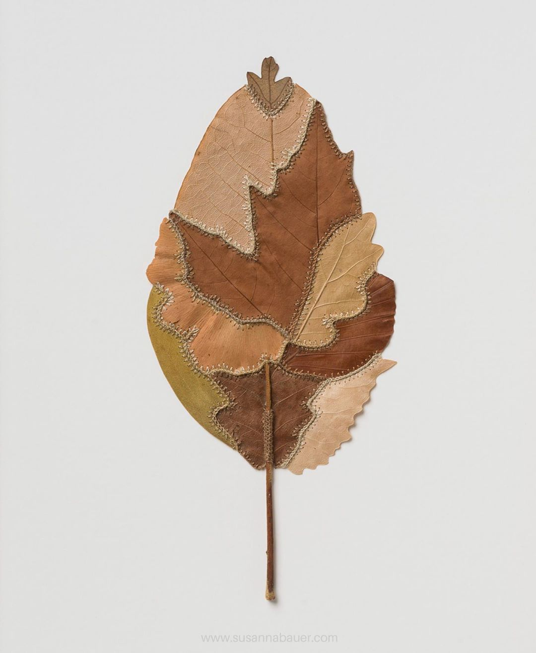 embroidery leaf art leaf patches susanna bauer