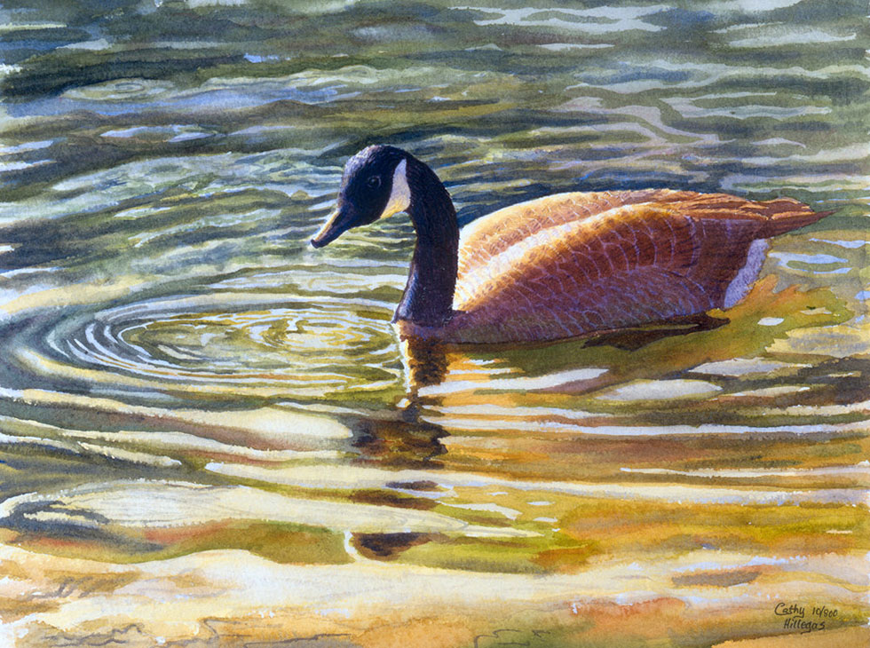 watercolor painting duck by cathy hillegas