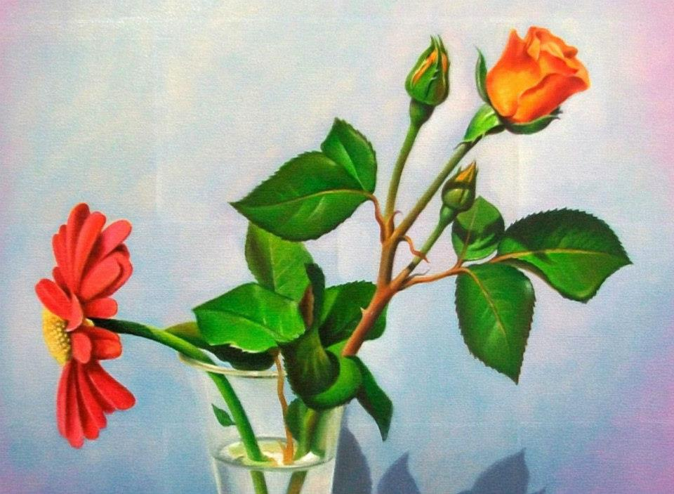 color pencil drawing rose by musa celik