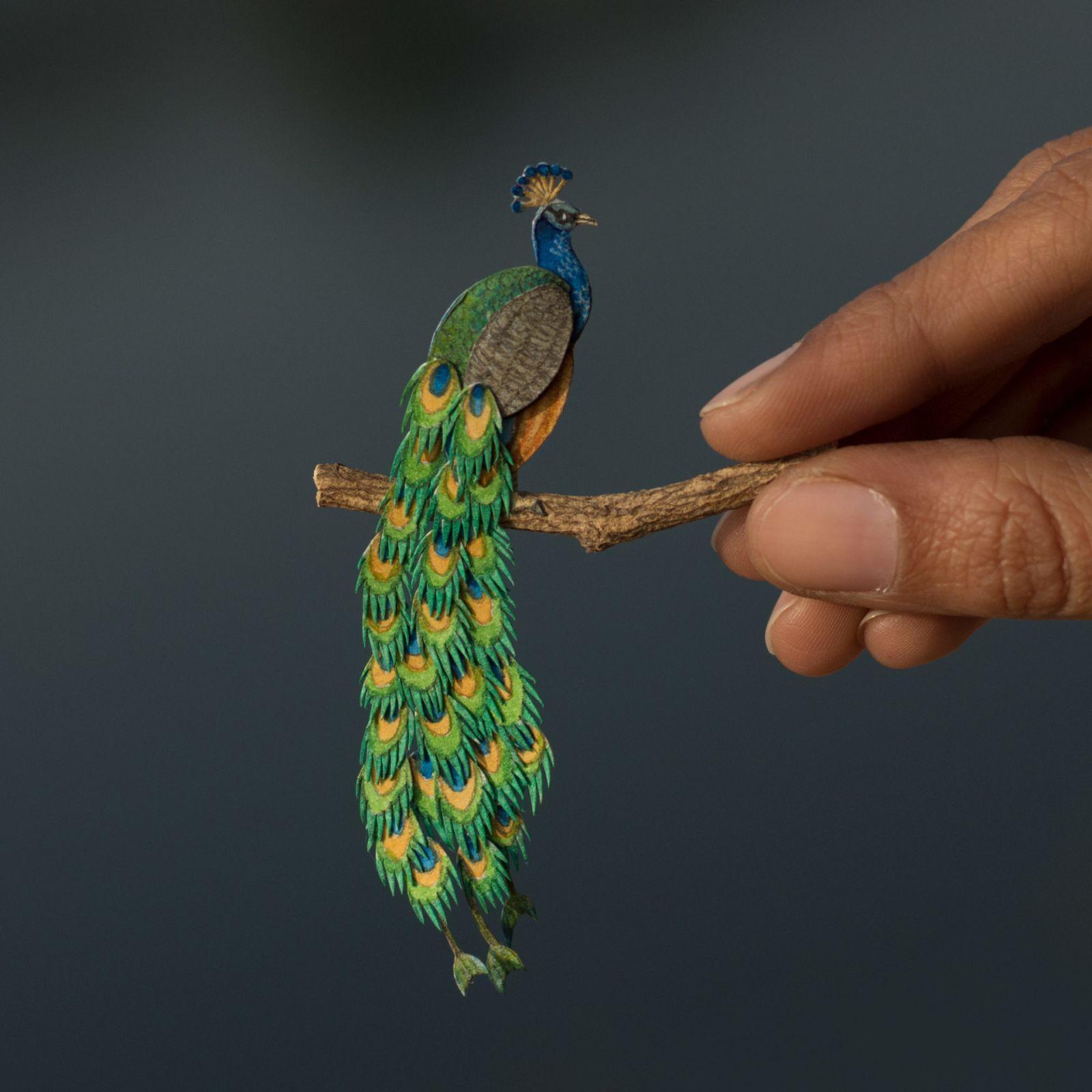 20 miniature paper art indian peafowl by nayan vaishali