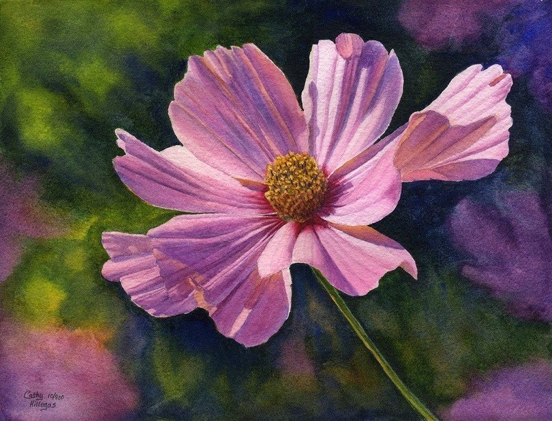 3 watercolor painting flower by cathy hillegas