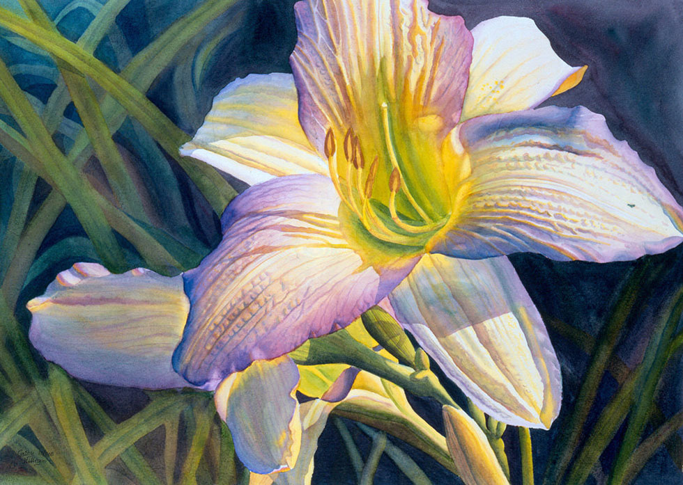 watercolor painting white flower by cathy hillegas