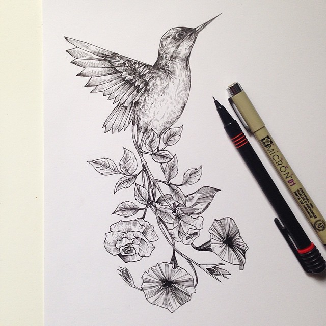 surreal drawing art humming bird alfred basha