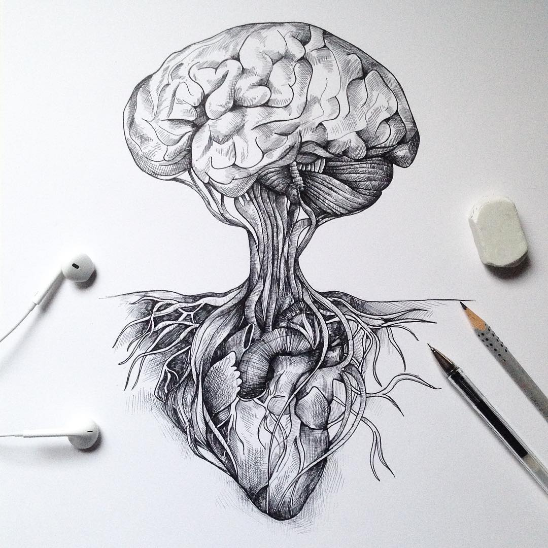 surreal drawing art brain alfred basha