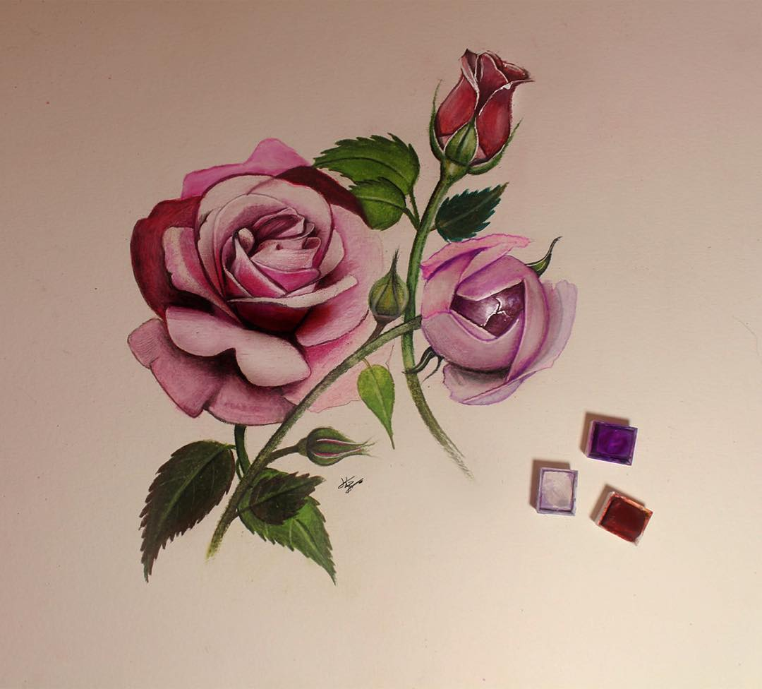 roses color pencil drawings by kayan artcisne