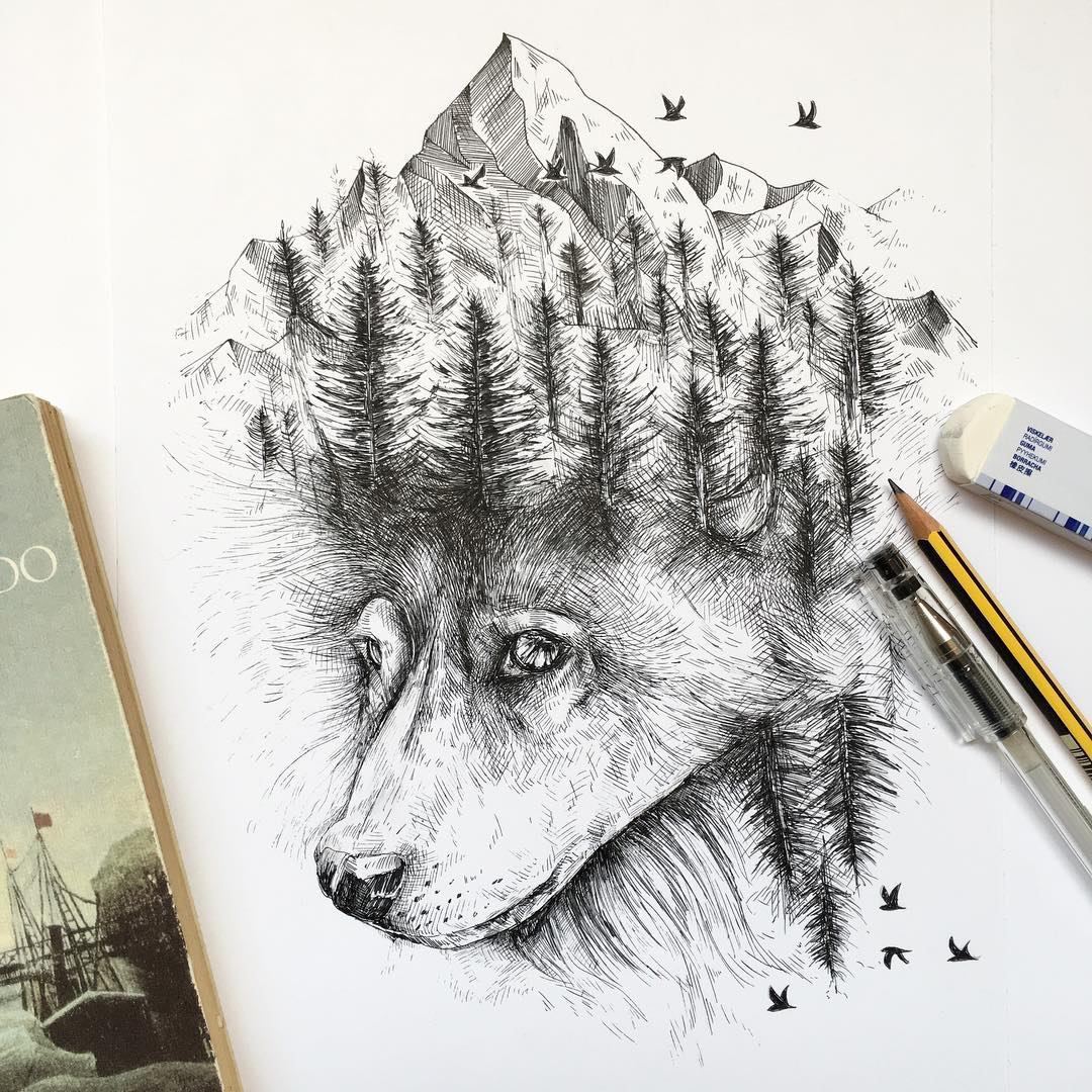 surreal drawing art fox alfred basha