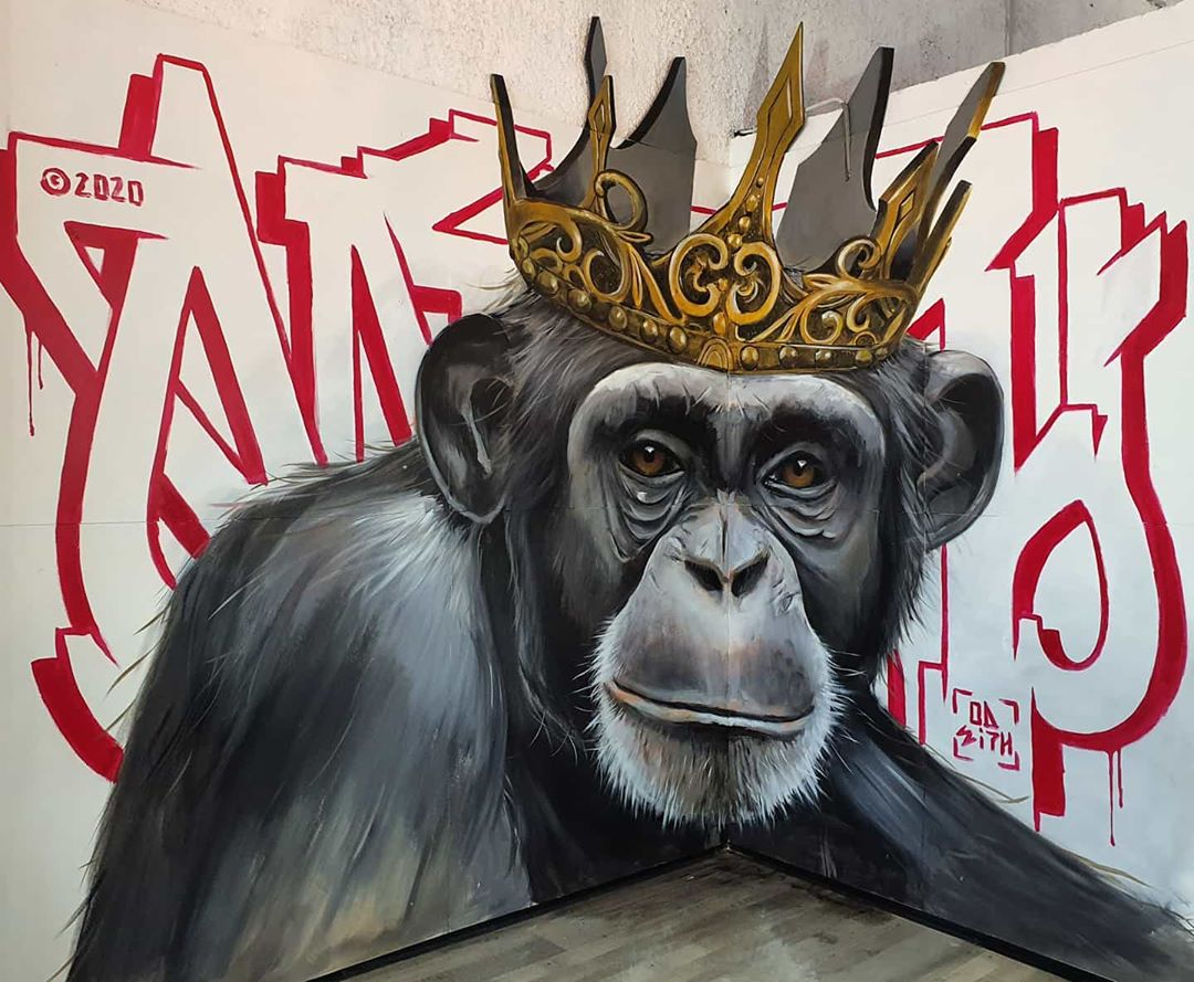 3d wall art mural painting monkey odeith