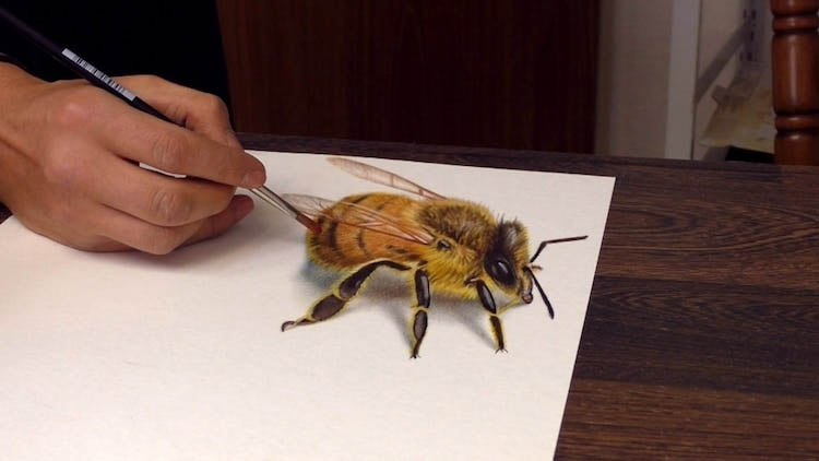 3d paintings bee stefan pabst