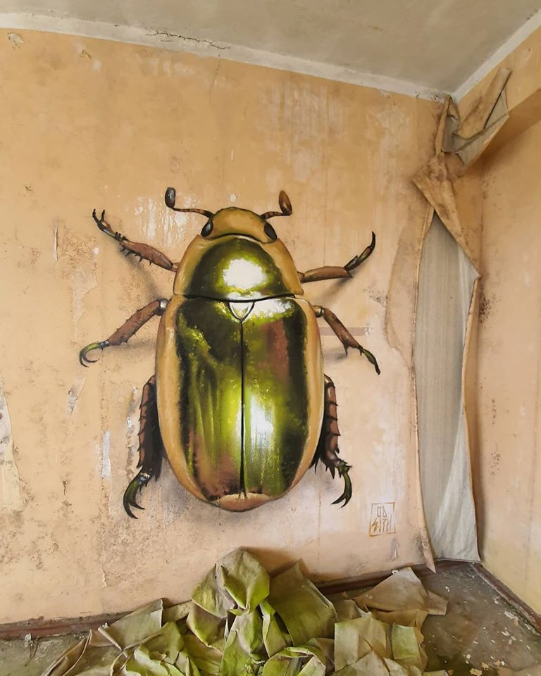 3d wall art mural painting beetle odeith