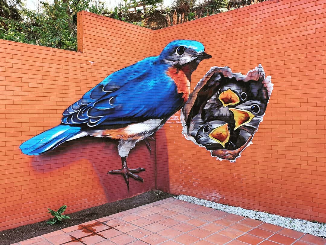 3d wall art mural painting bird nest odeith