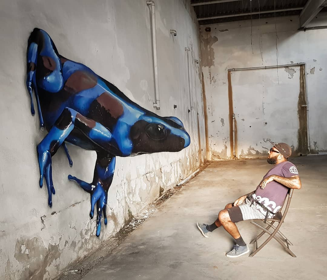 3d wall art mural painting blue frog odeith