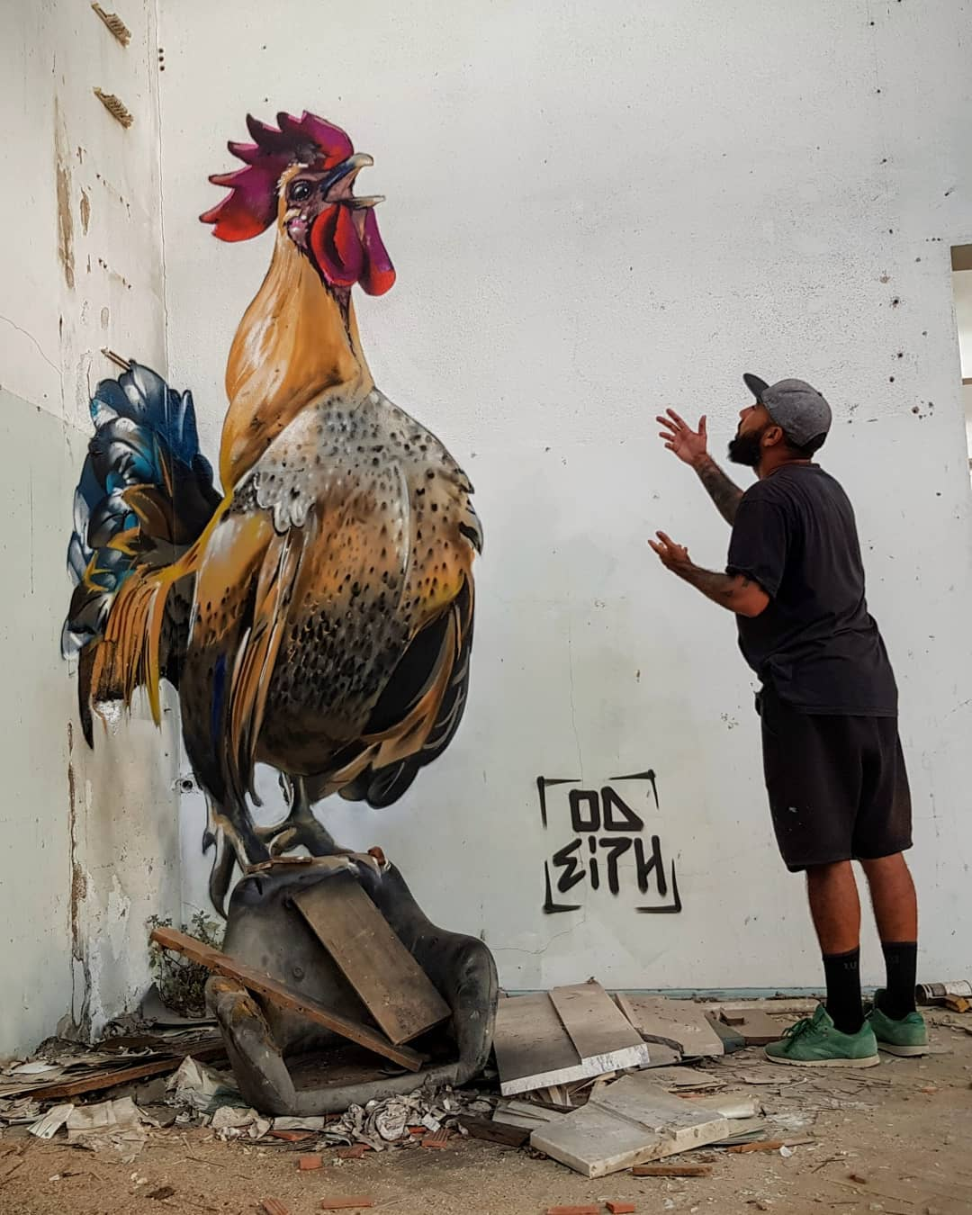3d wall art mural painting rooster odeith