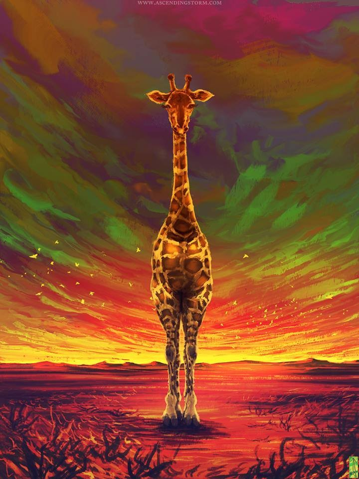 giraffe digital paintings by jeffery smith
