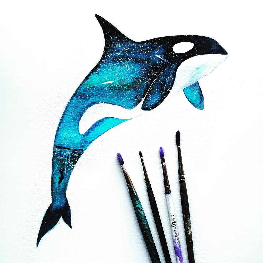 dolphin silhouette paintings by danielle foye