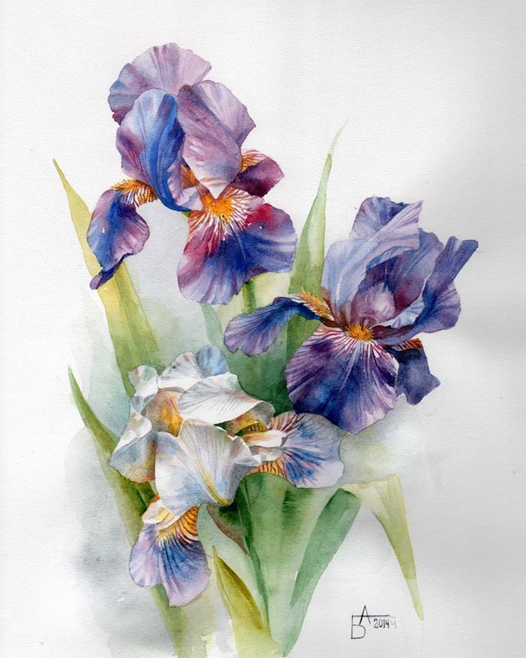 watercolor painting flowers besedina anastasia