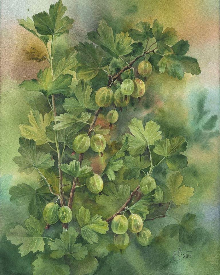 watercolor painting plants besedina anastasia