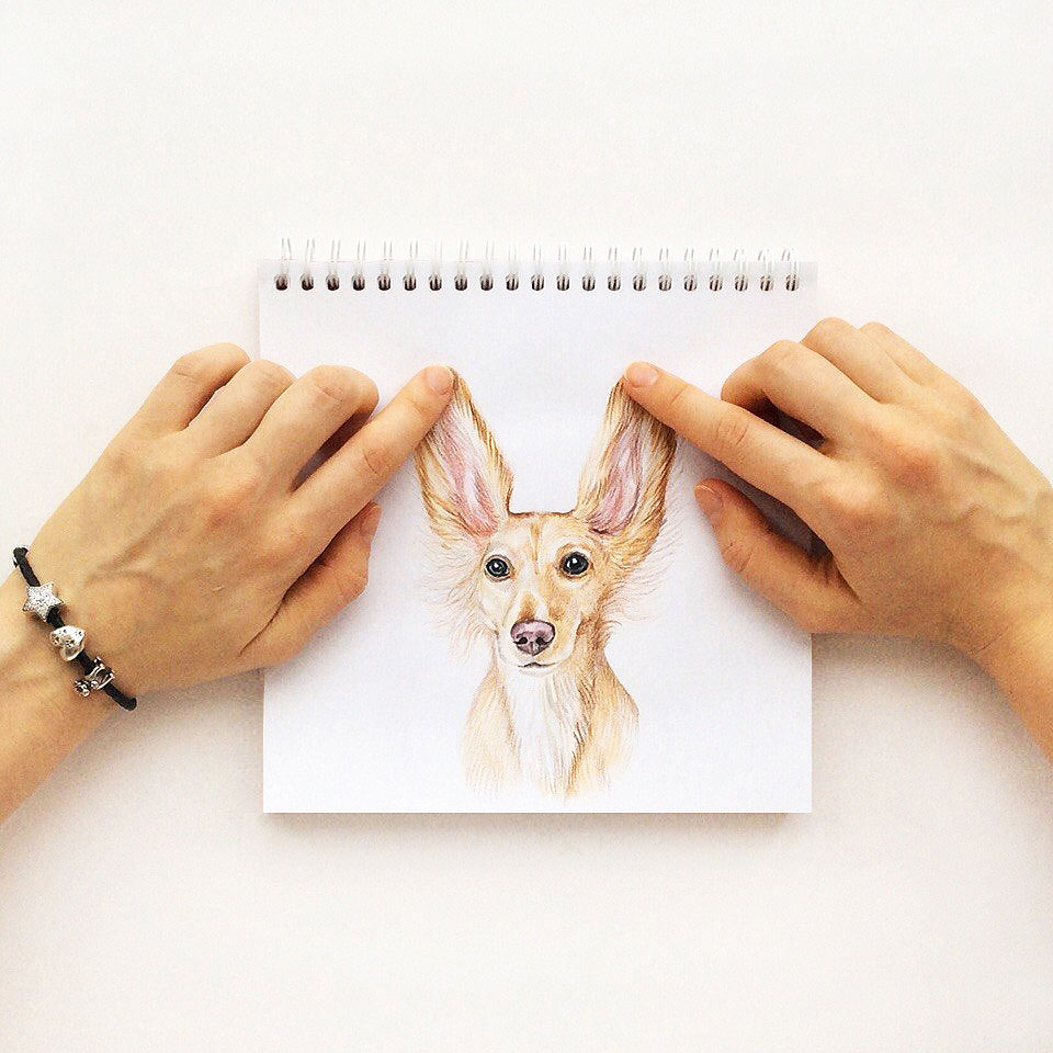 funny drawing dog by valerie susik
