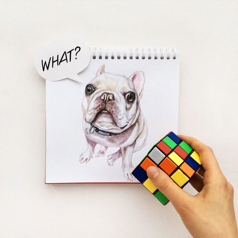 funny dog drawing rubiks cube by valerie susik