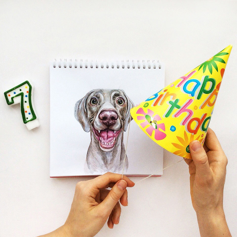 13 funny dog drawing birthday by valerie susik