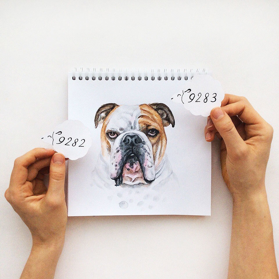 15 funny color pencil drawing idea by valerie susik