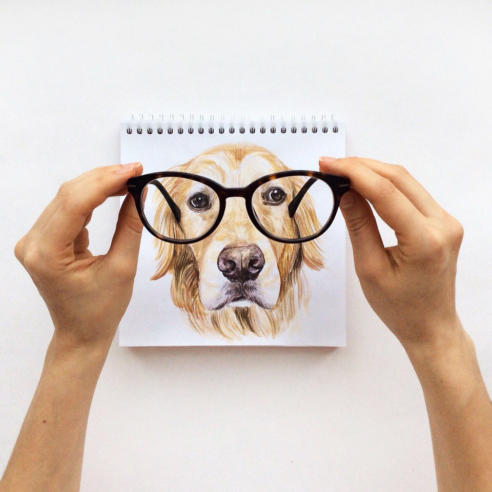 16 creative dog interactive drawing idea by valerie susik