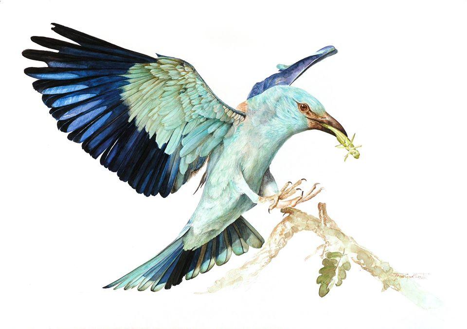 oil painting bird elena gualtierotti