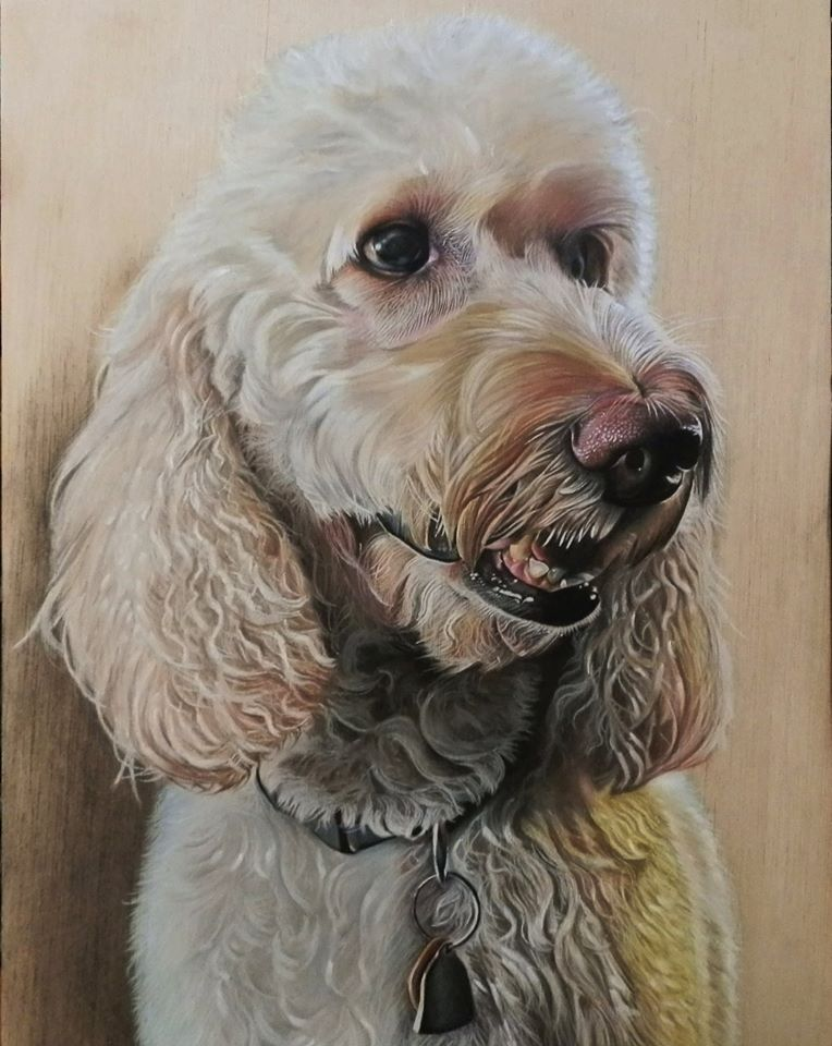 hyper realistic color pencil drawing dog by ivan hoo