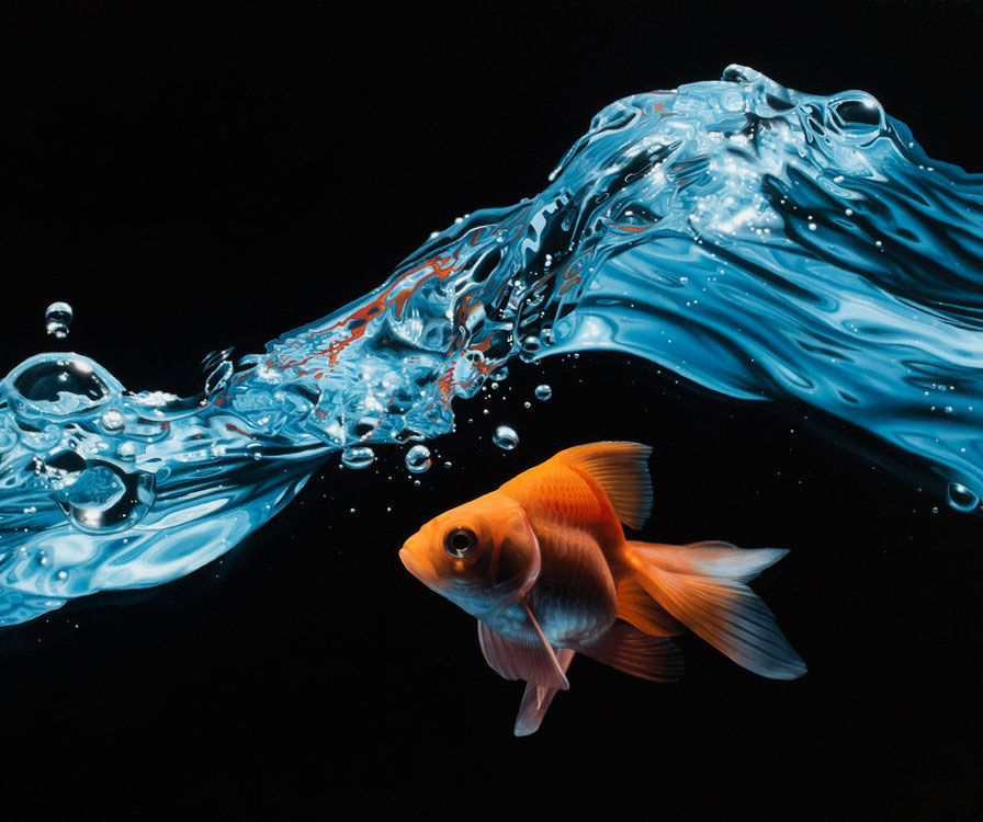 hyper realistic oil painting gold fish by patrick kremar
