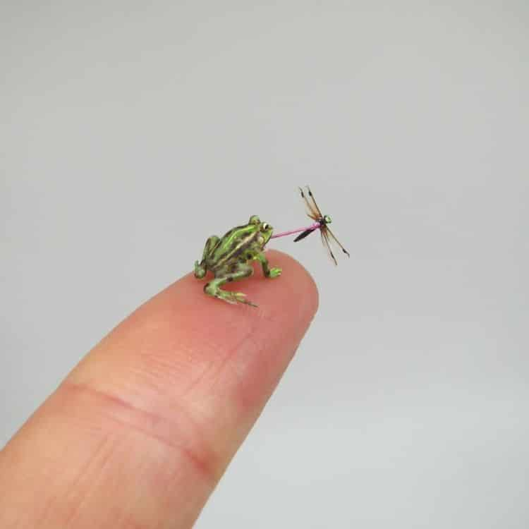 miniature polymer clay sculpture frog prey by fanni sandor