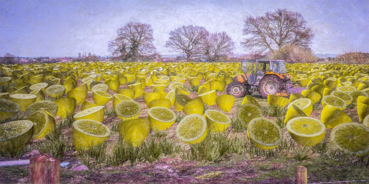 surreal oil painting world lemons by vitaly urzhumov