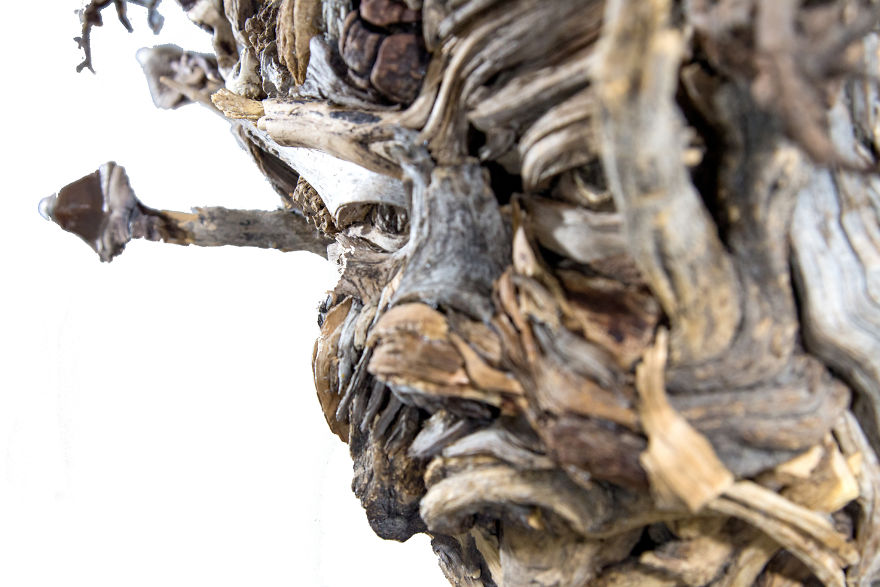 driftwood sculpture face by eyevan tumbleweed