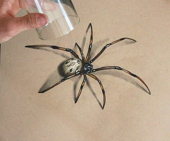 spider 3d drawing by sambailey