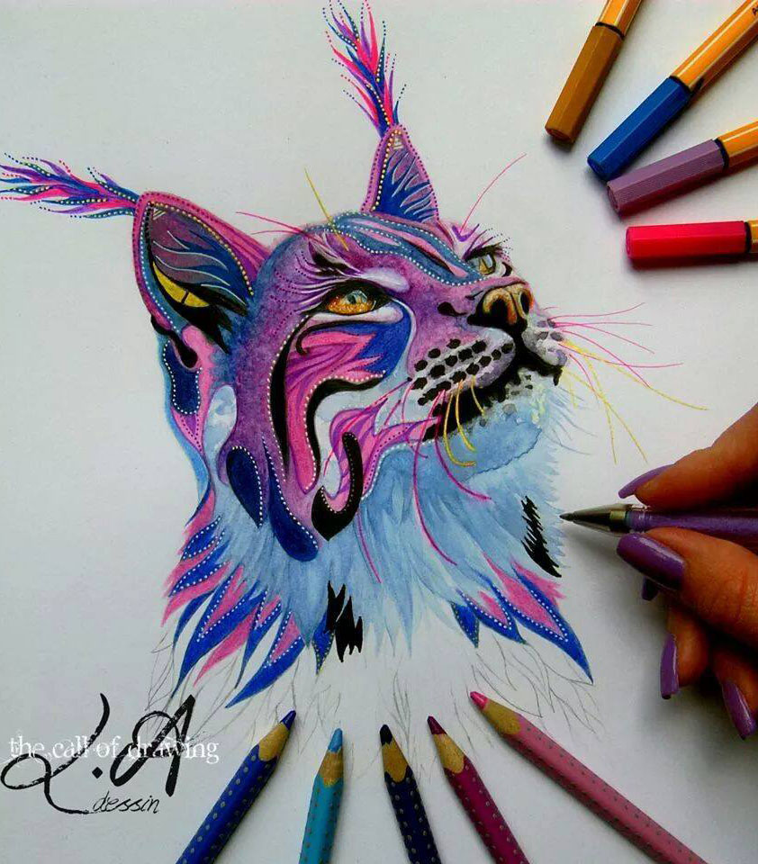 cat color pencil drawing