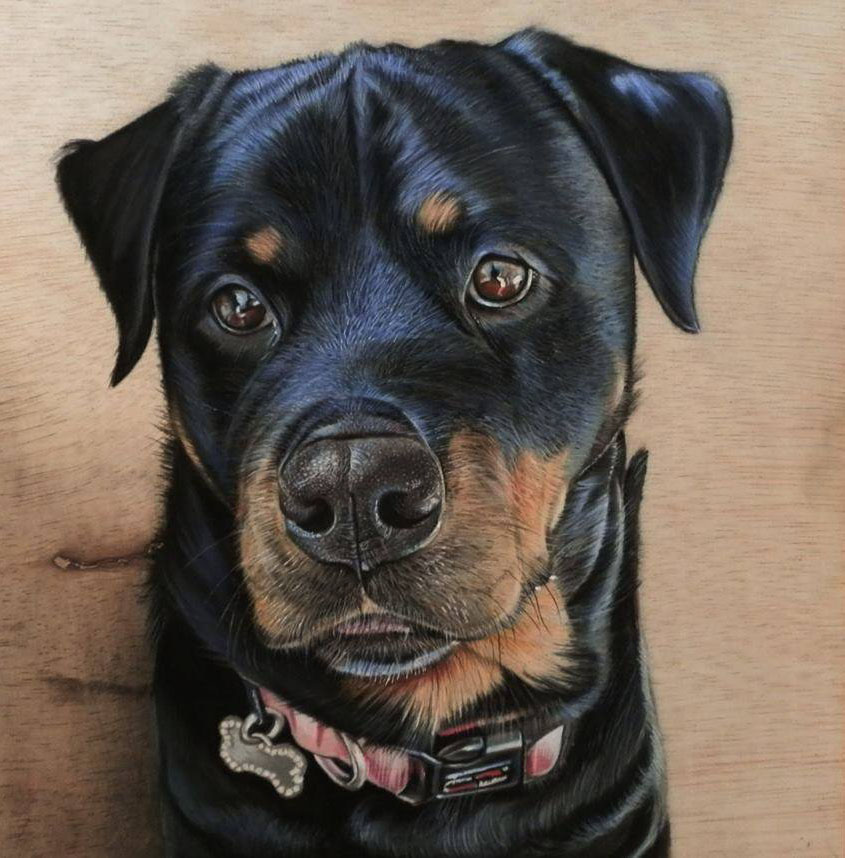 dog 3d drawing on wood
