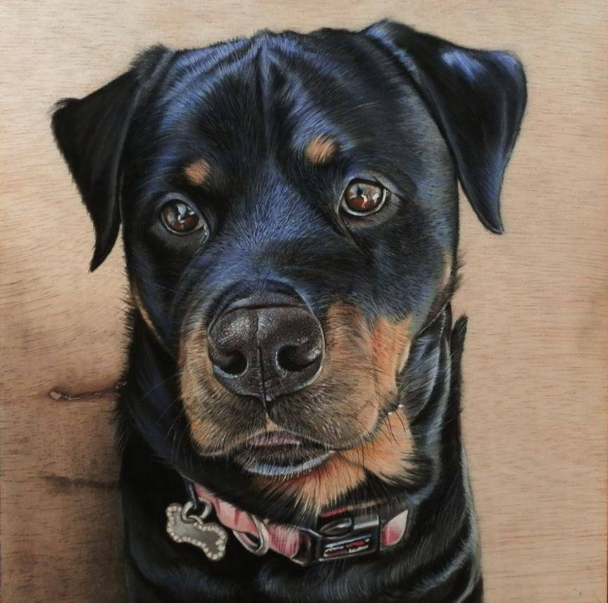 dog 3d drawing on woods by ivan