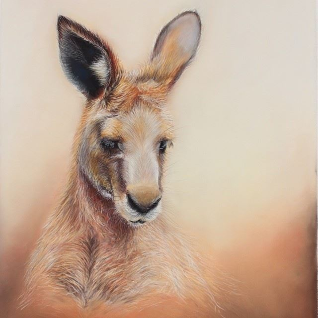 kangaroo color pencil drawing by joannebarby