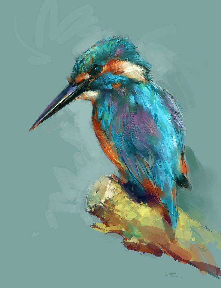 kingfisher digital art