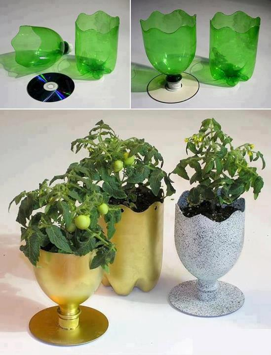 diy inspiration ideas bottle plant