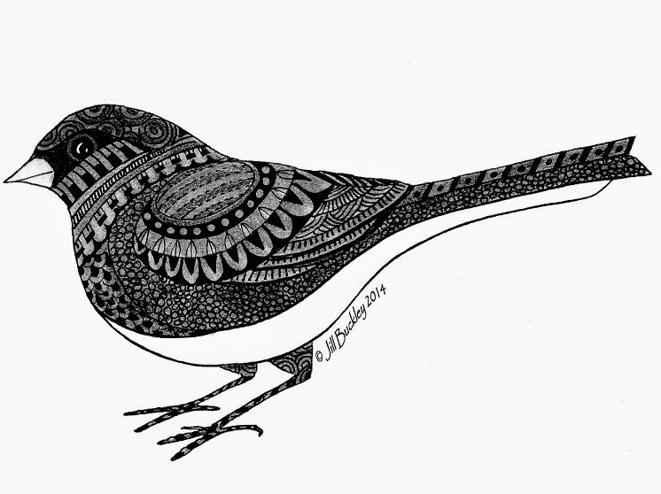 doodle artwork bird art by buckley