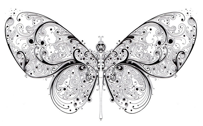 doodle artwork butterfly