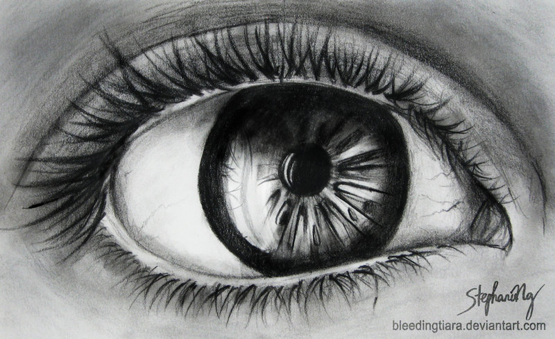 eyes drawings realistic pencil eye art by stephanieng