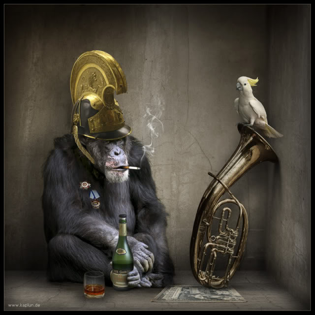 funny paintings monkey and bird art